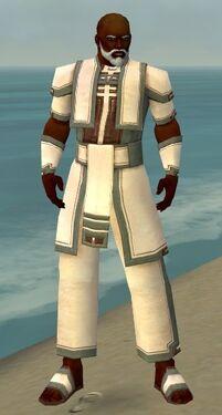 Monk Sacred Armor M gray front.jpg