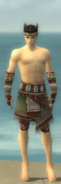 Ritualist Elite Exotic Armor M gray arms legs front.jpg