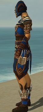 Ritualist Monument Armor M dyed side.jpg