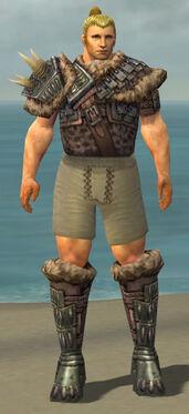 Warrior Charr Hide Armor M gray chest feet front.jpg