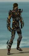 Assassin Elite Kurzick Armor M gray front.jpg