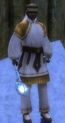 Dwarf Guard.jpg