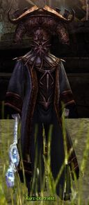 Kurzick Priest.jpg