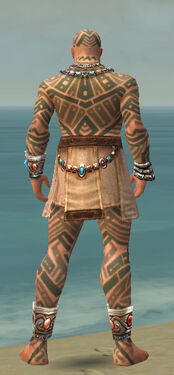 Monk Labyrinthine Armor M gray back.jpg
