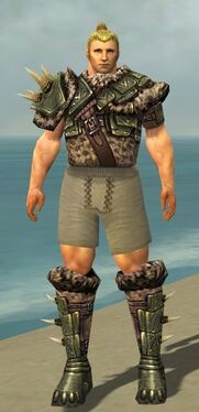 Warrior Elite Charr Hide Armor M gray chest feet front.jpg