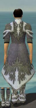 Elementalist Iceforged Armor M gray chest feet back.jpg