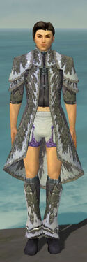 Elementalist Iceforged Armor M gray chest feet front.jpg