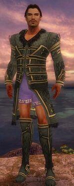 Mesmer Primeval Armor M gray chest feet front.jpg