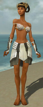 Paragon Ancient Armor F gray arms legs front.jpg