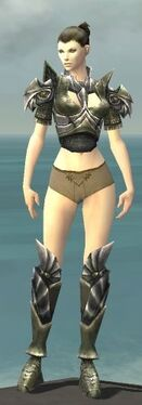 Warrior Templar Armor F gray chest feet front.jpg