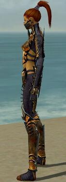 Assassin Elite Exotic Armor F dyed side.jpg