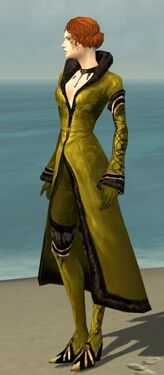 Mesmer Norn Armor F dyed side.jpg