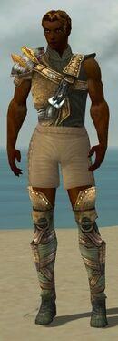 Ranger Tyrian Armor M gray chest feet front.jpg