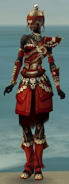 Ritualist Elite Imperial Armor F dyed front.jpg