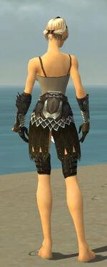 Warrior Silver Eagle Armor F gray arms legs back.jpg