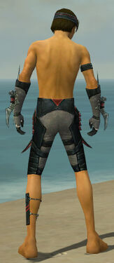 Assassin Elite Canthan Armor M gray arms legs back.jpg