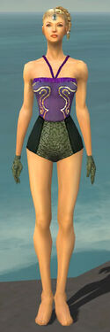 Mesmer Shing Jea Armor F gray arms legs front.jpg