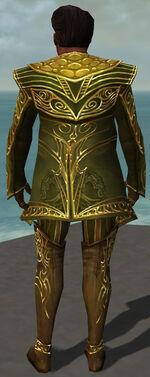 Norgu Mysterious Armor Back.jpg