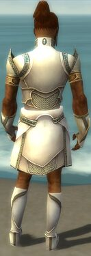 Paragon Asuran Armor M gray back.jpg
