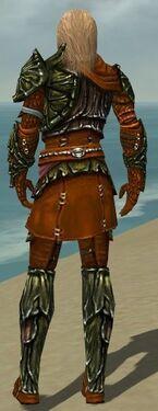 Ranger Elite Luxon Armor M dyed back.jpg
