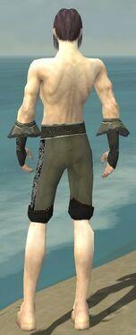 Elementalist Elite Kurzick Armor M gray arms legs back.jpg