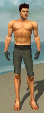 Mesmer Elite Enchanter Armor M gray arms legs front.jpg