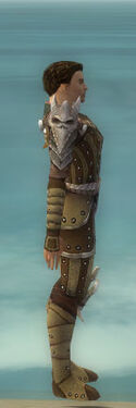 Ranger Elite Studded Leather Armor M dyed side.jpg