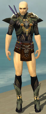Ritualist Elite Kurzick Armor M gray chest feet front.jpg