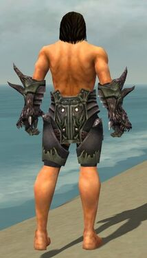 Warrior Primeval Armor M gray arms legs back.jpg