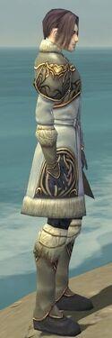 Elementalist Norn Armor M gray side.jpg