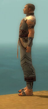 Monk Asuran Armor M gray side.jpg