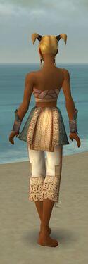 Monk Vabbian Armor F gray arms legs back.jpg