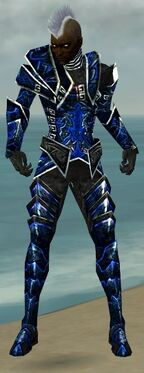 Necromancer Fanatic Armor M dyed front.jpg