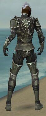 Necromancer Tyrian Armor M gray back.jpg