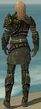 Ranger Elite Luxon Armor M gray back.jpg