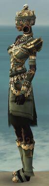 Ritualist Elite Imperial Armor F gray side.jpg