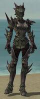 Warrior Primeval Armor F gray front.jpg