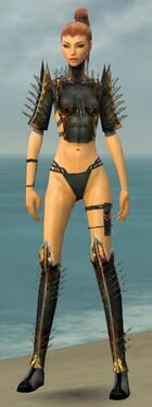 Assassin Exotic Armor F gray chest feet front.jpg