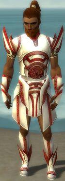 Paragon Asuran Armor M dyed front.jpg