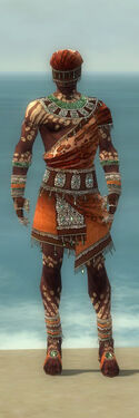 Ritualist Elite Exotic Armor M dyed front.jpg