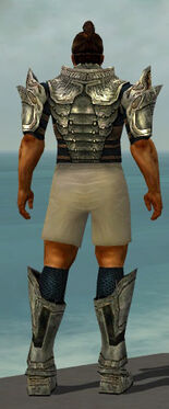 Warrior Elite Sunspear Armor M gray chest feet back.jpg