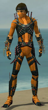 Assassin Elite Canthan Armor M dyed front.jpg