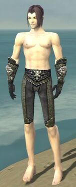 Elementalist Elite Stoneforged Armor M gray arms legs front.jpg