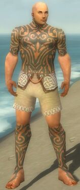 Monk Flowing Armor M gray chest feet front.jpg