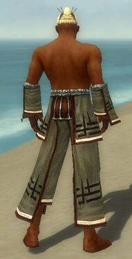 Monk Kurzick Armor M gray arms legs back.jpg