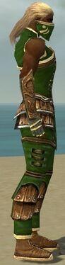 Ranger Shing Jea Armor M dyed side.jpg