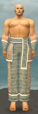 Monk Woven Armor M gray arms legs front.jpg