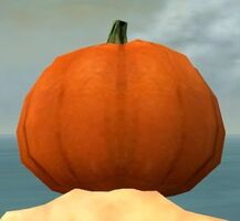 Pumpkin Crown gray back.jpg