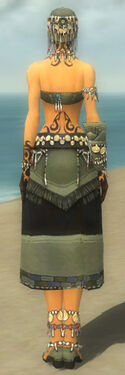 Ritualist Luxon Armor F gray back.jpg