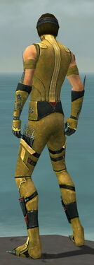 Assassin Canthan Armor M dyed back.jpg